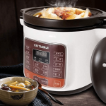 5 Best Electric Stew Pot